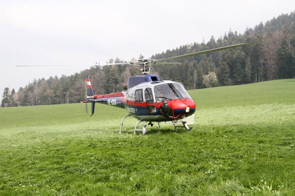 Feuerwehr_Leiblachtal_Waldbranduebung_2019-04-12_008-IMG_2268.jpg