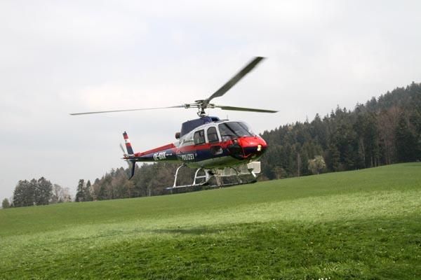 Feuerwehr_Leiblachtal_Waldbranduebung_2019-04-12_009-IMG_2271.jpg