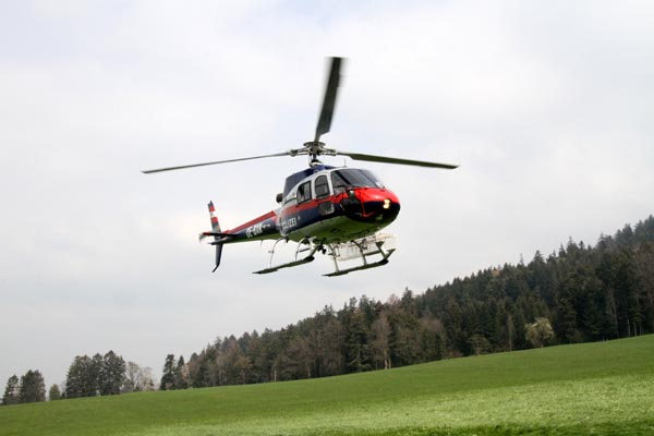 Feuerwehr_Leiblachtal_Waldbranduebung_2019-04-12_011-IMG_2273.jpg